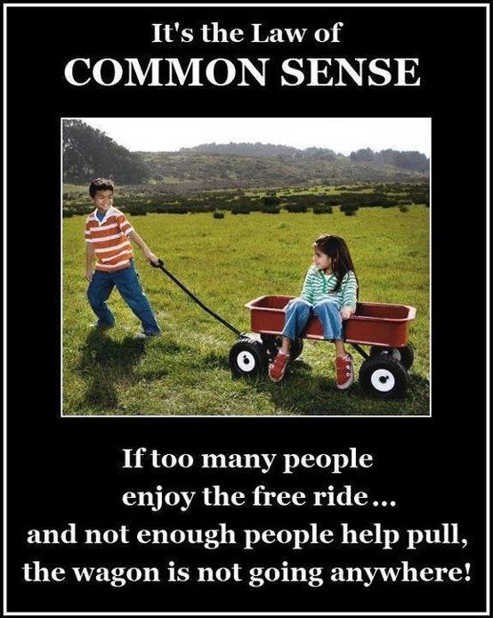 Simple common sense questions