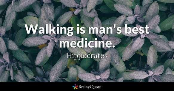 Amy 1 hippocrates1-2x